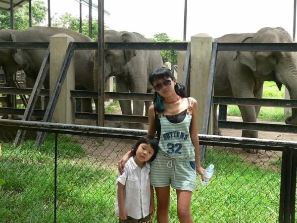 Зоопарк в Пномпене