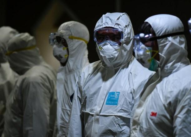 В Таиланде ученые закончили тестировать вакцину от COVID на обезьянах