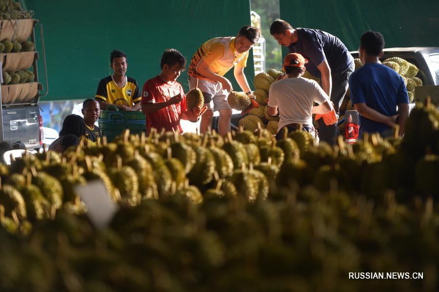 Китайский рынок способствует процветанию таиландских садоводов