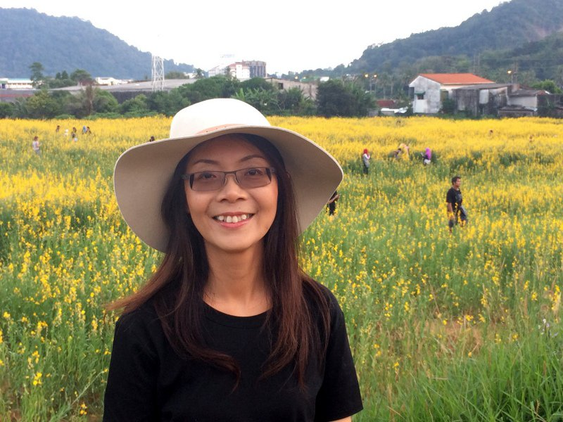 Жительница Пхукета засадила поле желтыми цветами в память о Короле