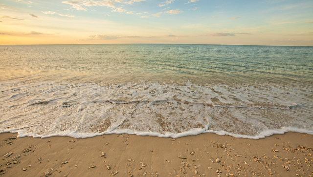 В Таиланде закрыли популярный у туристов пляж из-за нападения акулы