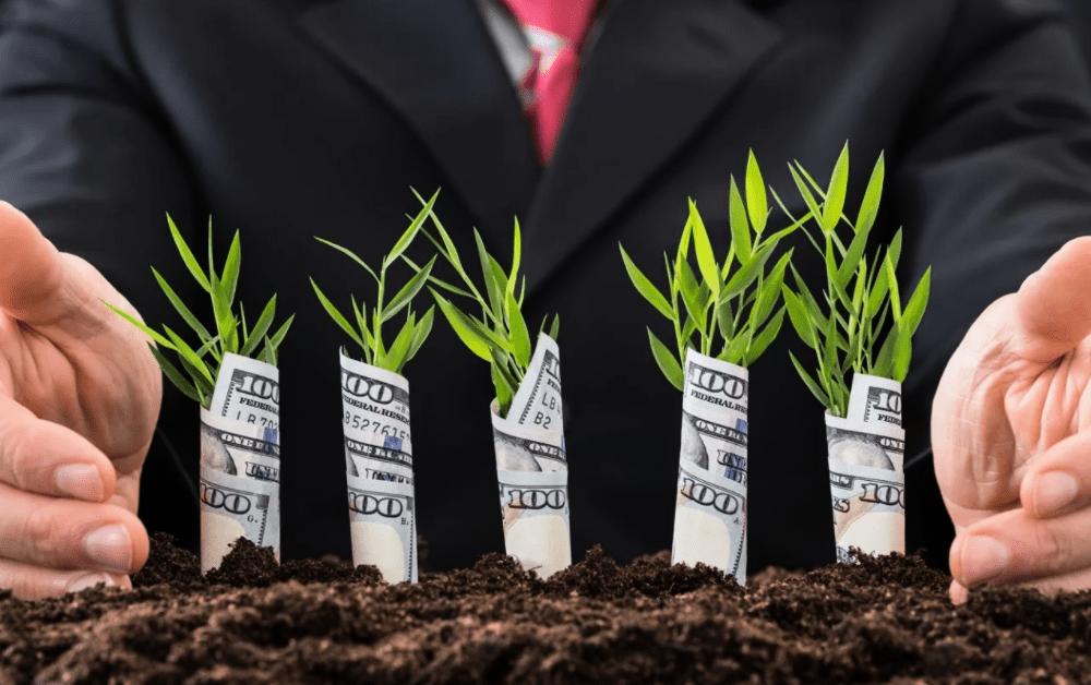 Камбоджа приглашает компании РФ инвестировать в сельскохозяйственный сектор страны - посол