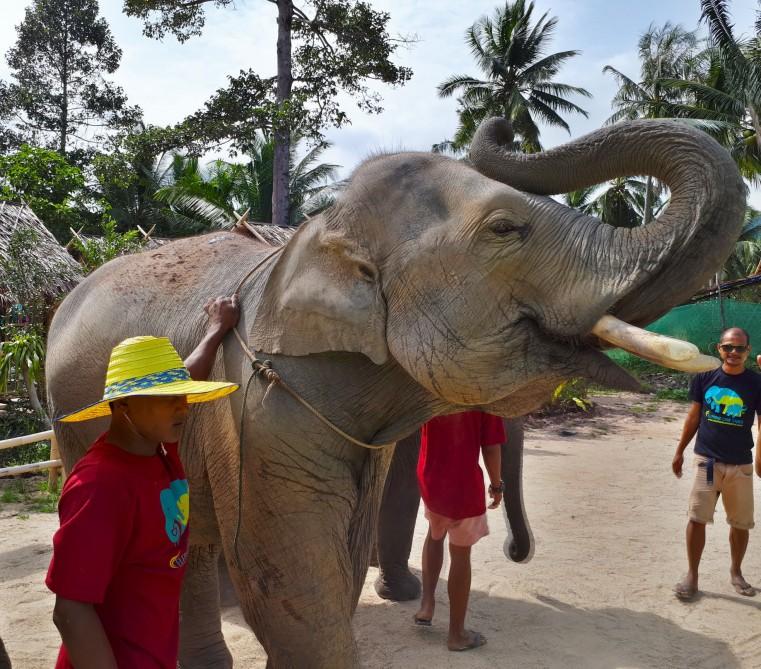 Жемчужины Таиланда - остров Самуи и Бангкок