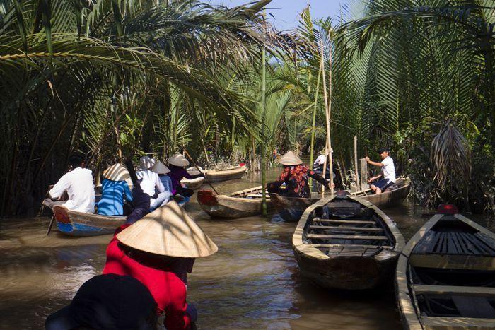 Ученые открыли 157 новых видов животных и растений у реки Меконг