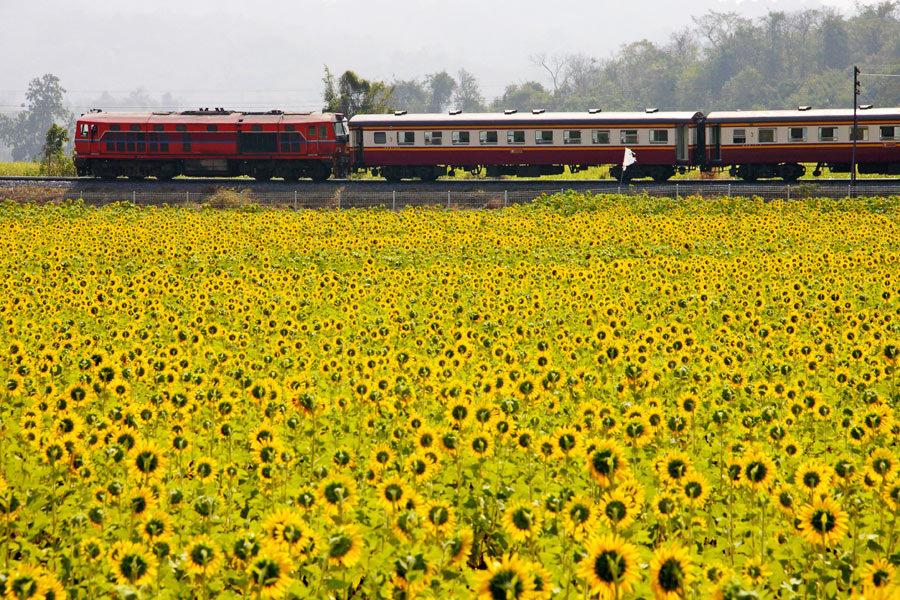 Тайские железные дороги запускают продажу билетов онлайн