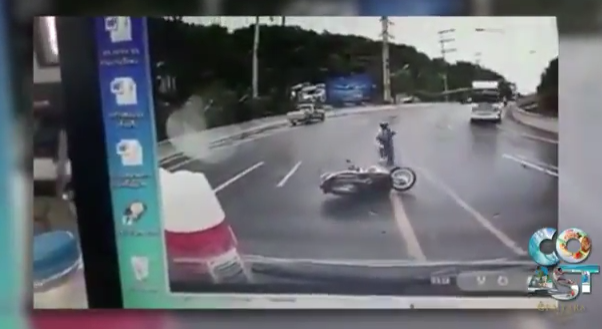 Soi Dog wins! Motorbike crashes, Thailand's happiness