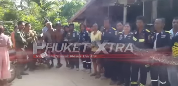 Red Bull family's 'cop killer'? 100kg python?! Plastic in bottled water?