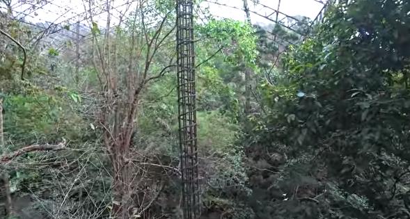 Наша Паттайя, АкваПарк Рамаяна, Зоопарк Као Кео 2018