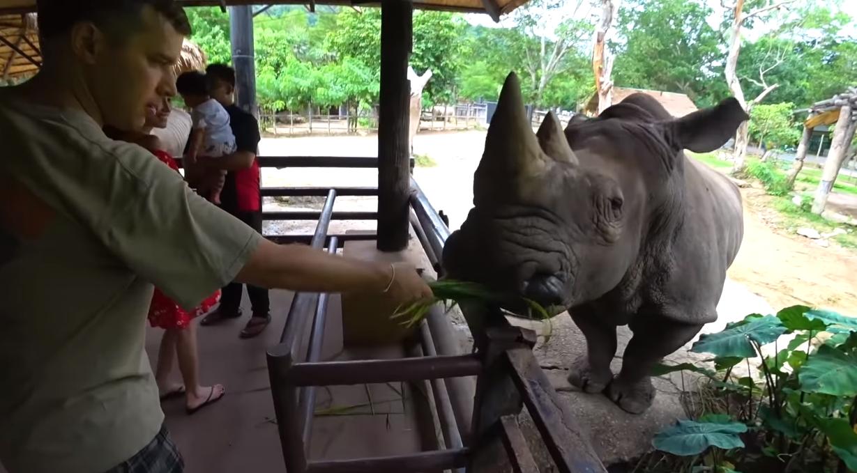 Самый большой зоопарк в Тайланде