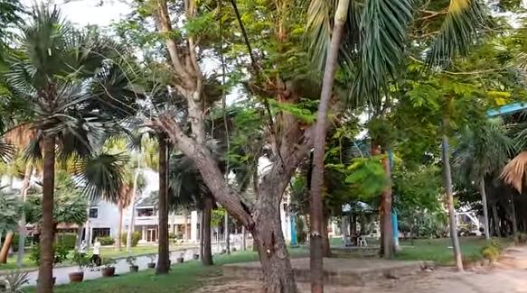 Паттайя Парк Pattaya Park 2018