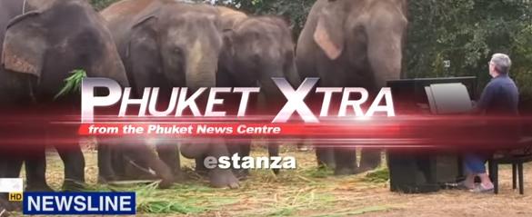 Phuket oil spill! Music for elephants! Are island roads safer?    Phuket