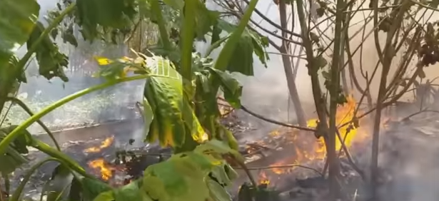 Patong trash fire! Tournament for daughter! Tsunami-evacuation drill? || Phuket