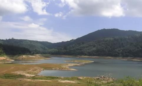 Second Phuket water crisis? 'Peace walk' monk returns! Dangerously sweet! || Phuket