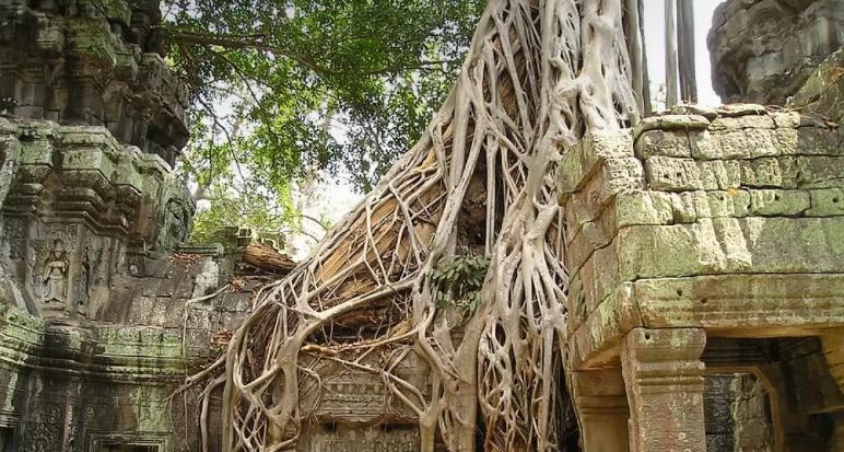 Камбоджа уступила лидерство по количеству выходных: где в мире отдыхают больше всего