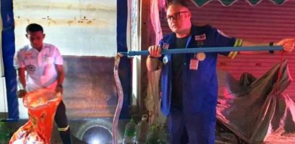 Британец поймал 2-метровую кобру возле 7-Eleven в Патонге
