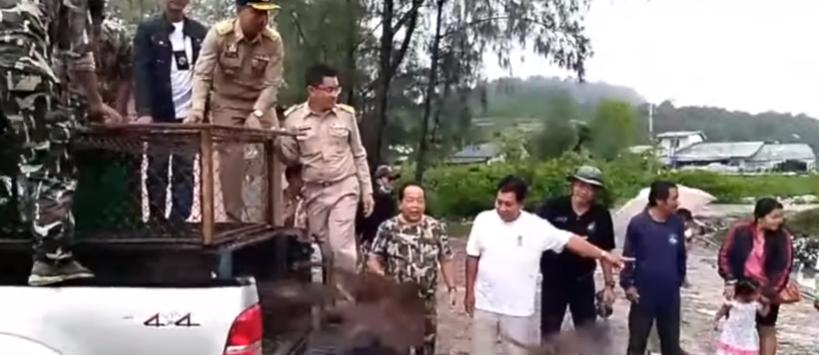 Wild monkeys rising! Climate strikers 'drop dead'? Interpol look for fugitive tourist! || Phuket