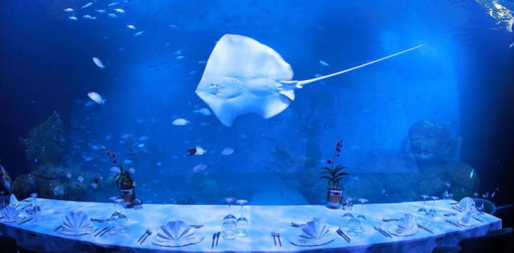 В Таиланде открылся крупнейший аквариум и первый подводный ресторан