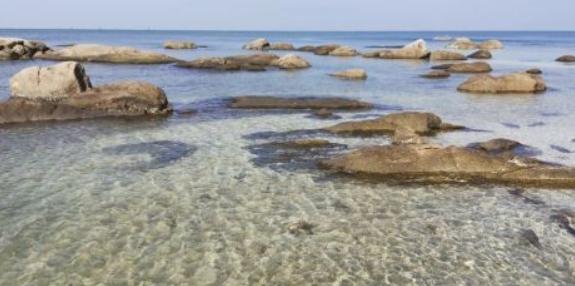 Член мафиозного клана Чонбури пропиарил пляж Банг-Сэн