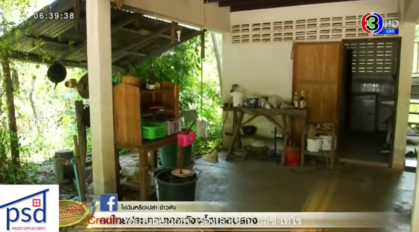 MP proposes legalising prostitution in Thailand! Rumblings over flight ban?    Thailand News