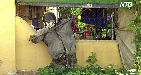 Камбоджийские фермеры отпугивают COVID соломенными чучелами