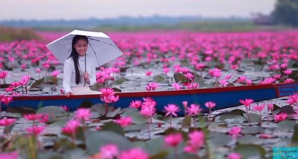 Сказочные кадры: Как выглядит Озеро розовых лотосов в Тайланде