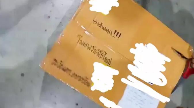 В Таиланде из посылки вылез трехметровый питон и напугал работников почты