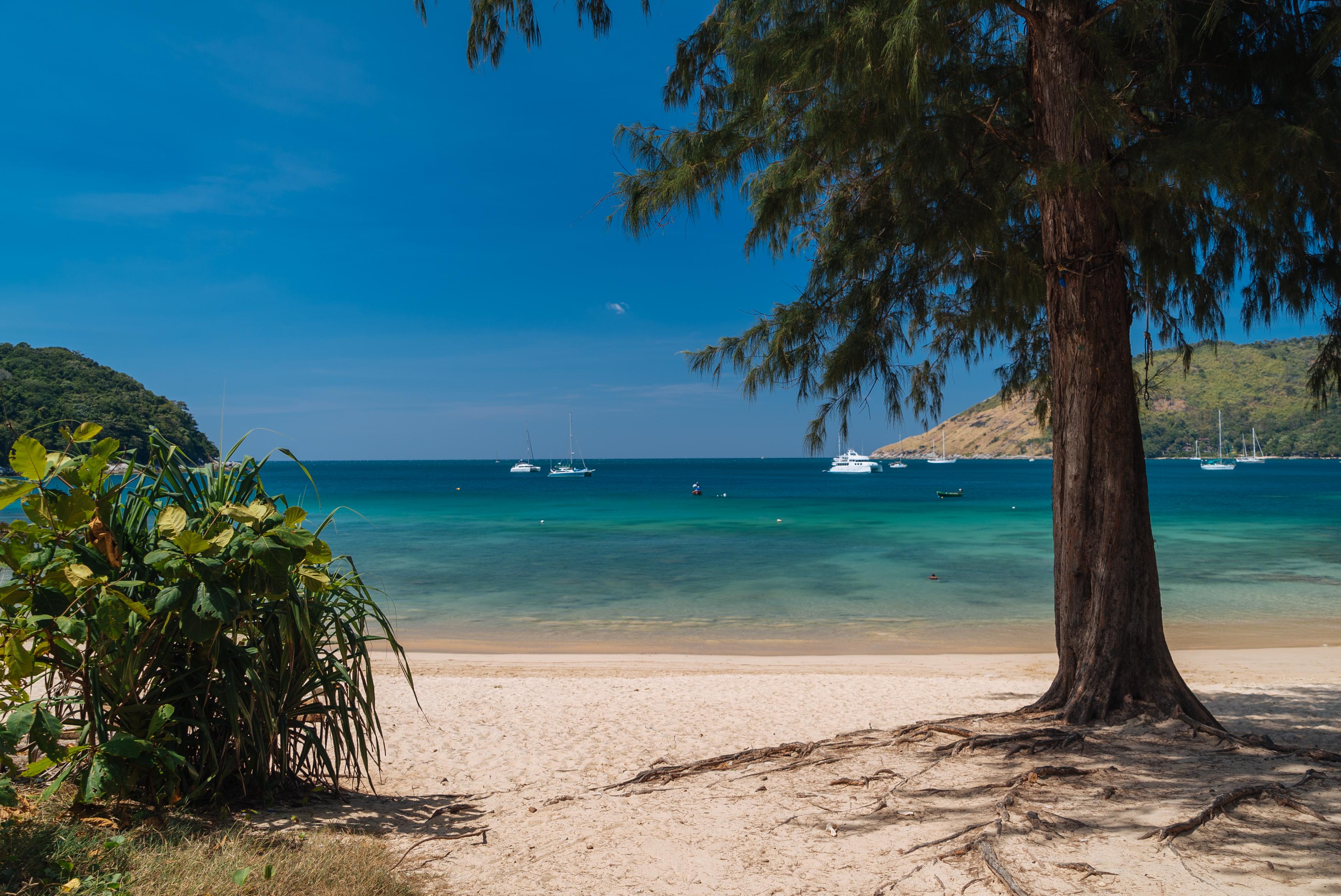В Таиланде рассчитывают принять пять миллионов туристов в 2021 году
