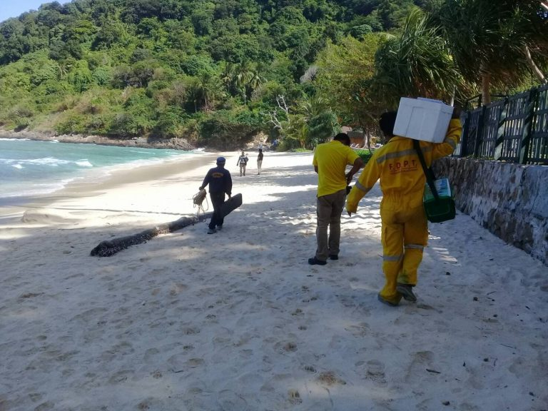 Охотники за крокодилом на Пхукете перемещаются на пляж Патонг