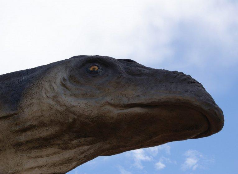 Ваюраптор — одиннадцатый динозавр в Таиланде
