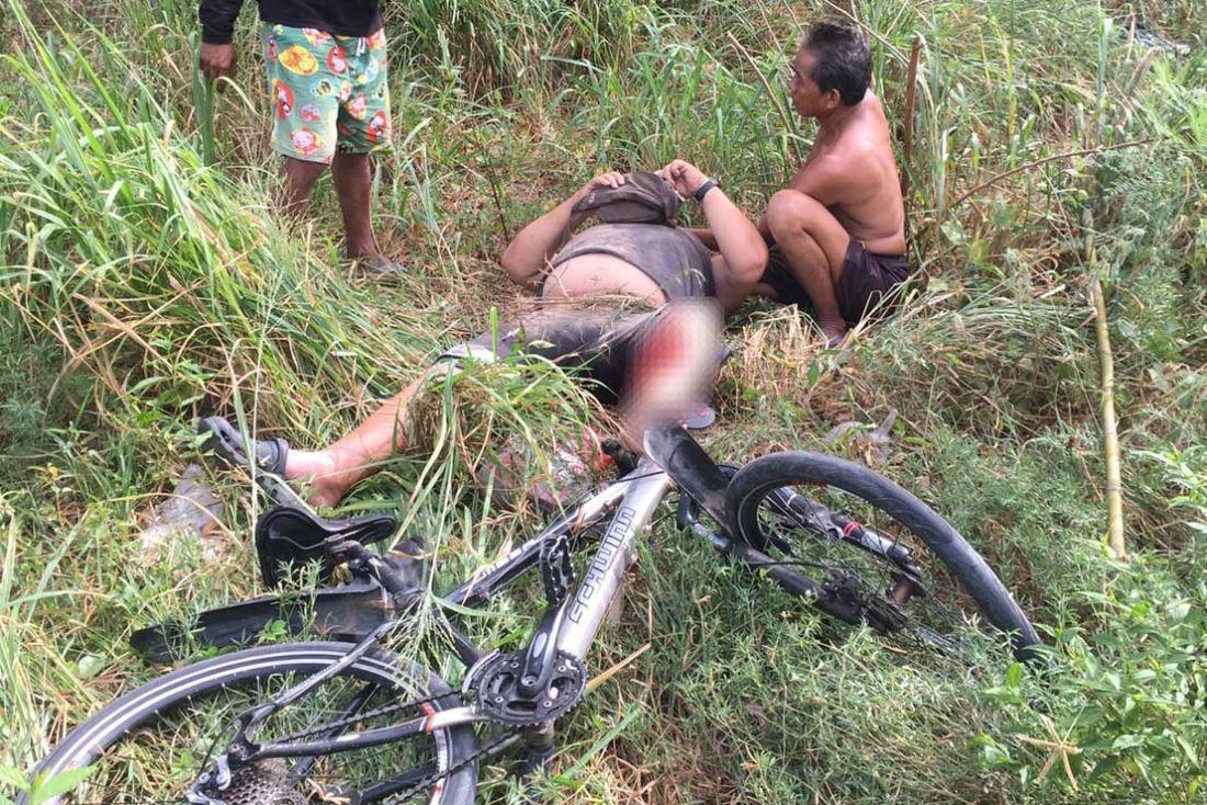 Слон атаковал велосипедиста из Германии недалеко от Паттайи
