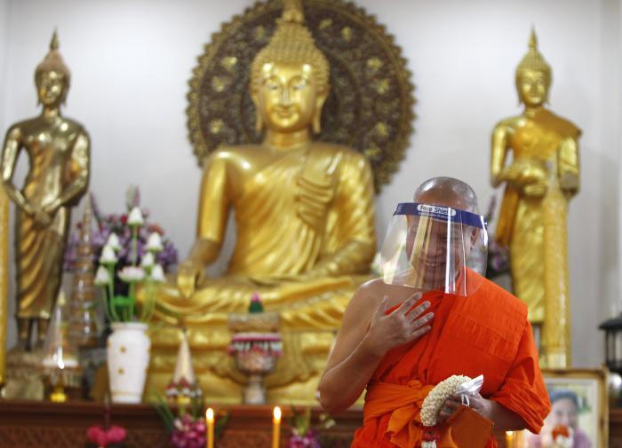 Как в Таиланде лечат коронавирус зеленой чиреттой