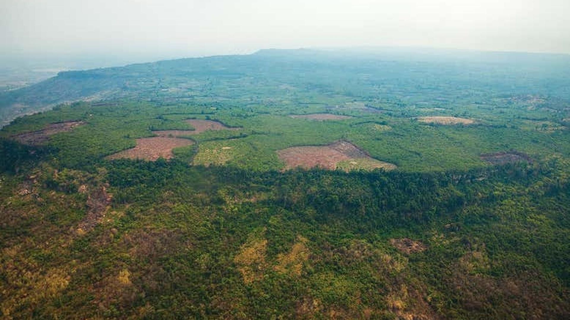 В джунглях Камбоджи найдена затерянная столица Кхмерской империи