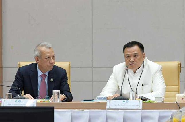 Таиланд планирует ввести годовую медицинскую визу