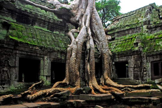 Ангкор в Камбодже на первом месте рейтинга самых интересных древних городов мира