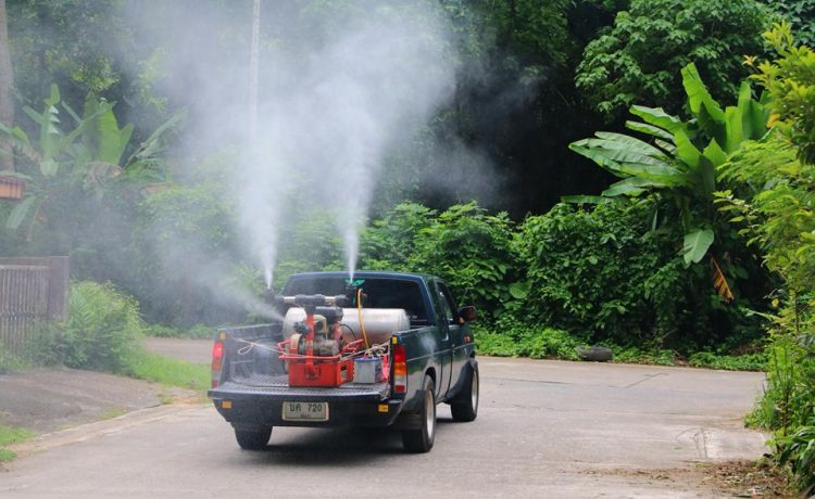В лесных районах Таиланда распыляют инсектицидные препараты от комаров
