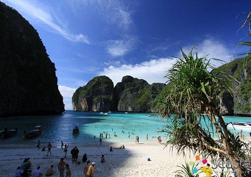 В Таиланде отдыхающих не пустят на пляж, где снимался фильм «Пляж»