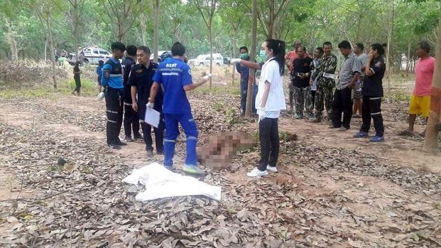 Дикий слон убил человека в Таиланде