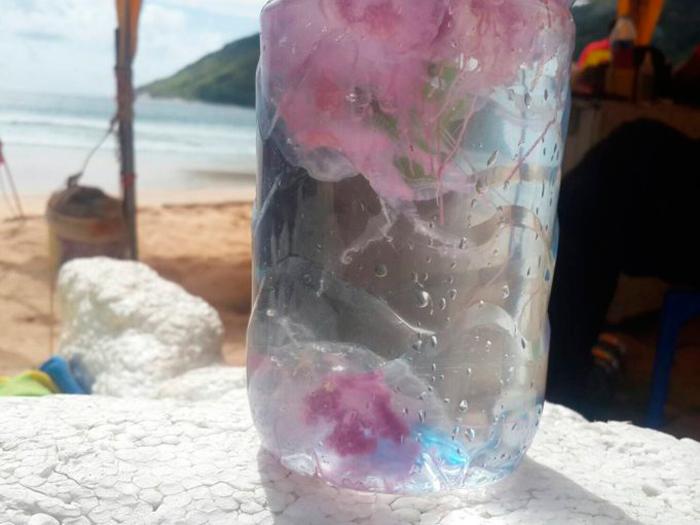 Медузы на пляже Най Харн на Пхукете