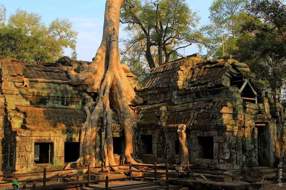 Подробный маршрут по Камбодже на целый месяц