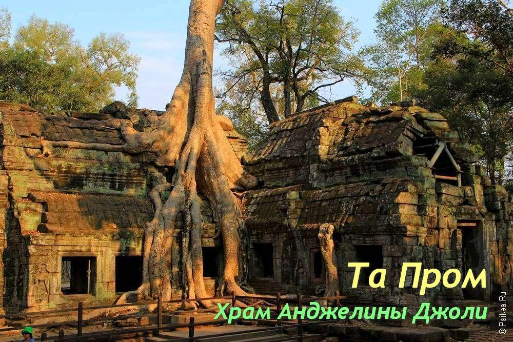 Та Пром — удивительный храм Анджелины Джоли в Камбодже | Ta Prohm
