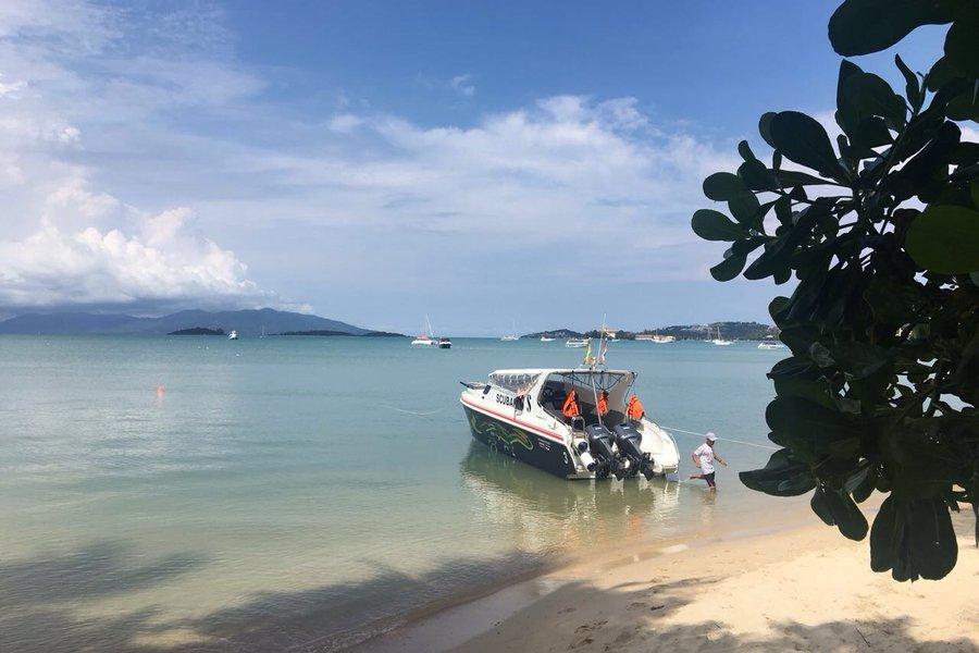 Массовые проверки проводят в Таиланде