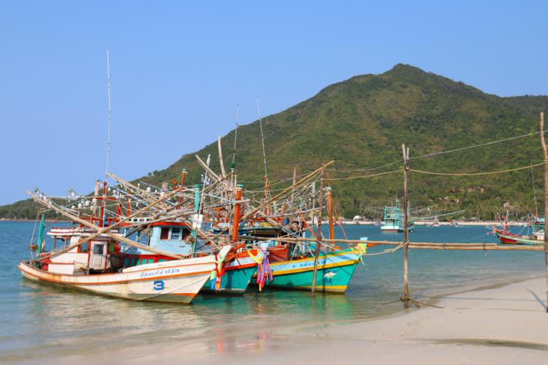 Природоохранные активисты призывают к перезагрузке туризма в Таиланде