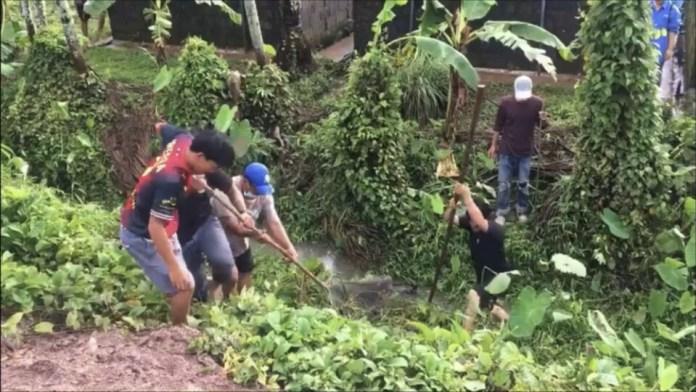 Десятки крокодилов  сбежали из своих вольеров на крокодиловой ферме