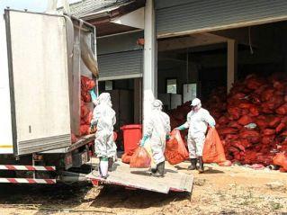 Паттайя начала вывоз опасных медицинских отходов из Као-Майкэо