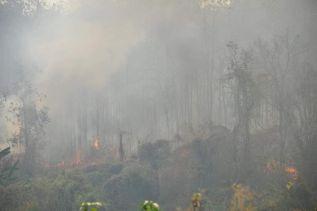 Откуда на севере Таиланда такой мощный и продолжительный смог?