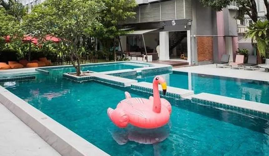 Каковы шансы на успех программы Pattaya Move On?