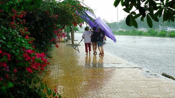 МИД предупредил россиян о проливных дождях в Таиланде до октября