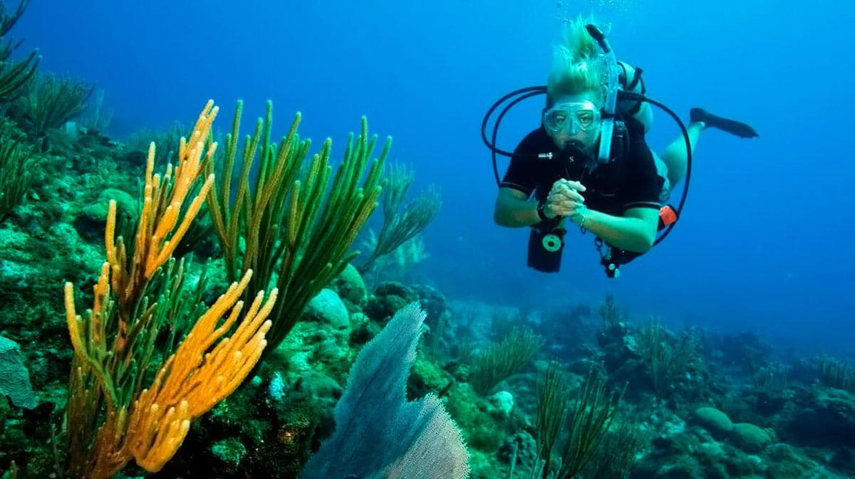 8 самых известных мест для дайвинга в Таиланде