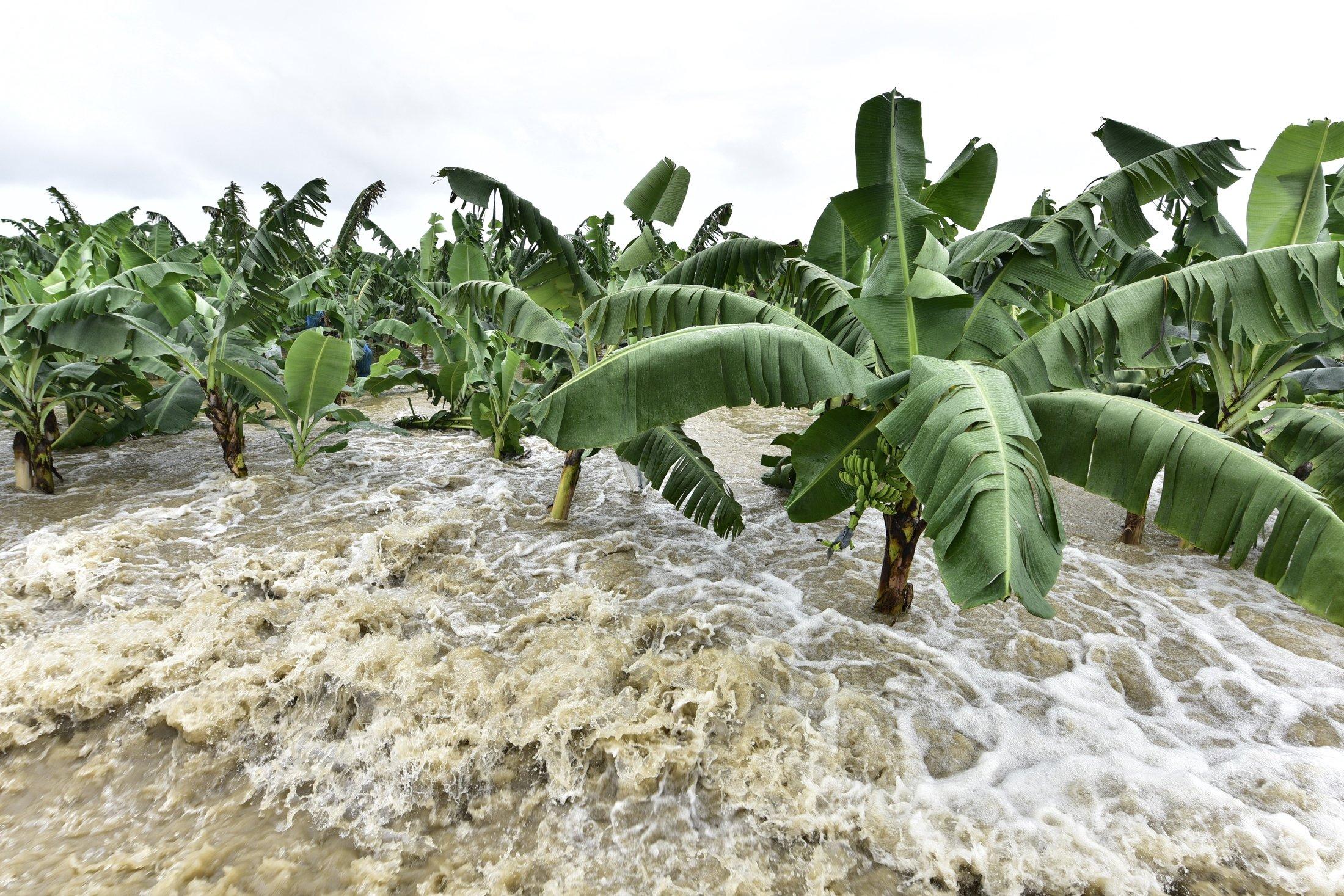 Три провинции Таиланда пострадали от наводнения