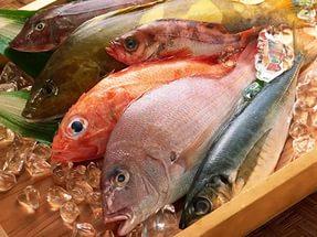 Для Китая готовят рыбное место в Камбодже